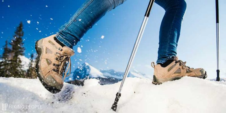 Best Budget Trekking Poles for Hiking and Backpacking