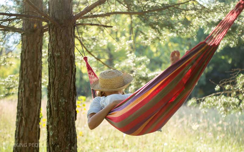 Hammock Maximum Withstanding Weight