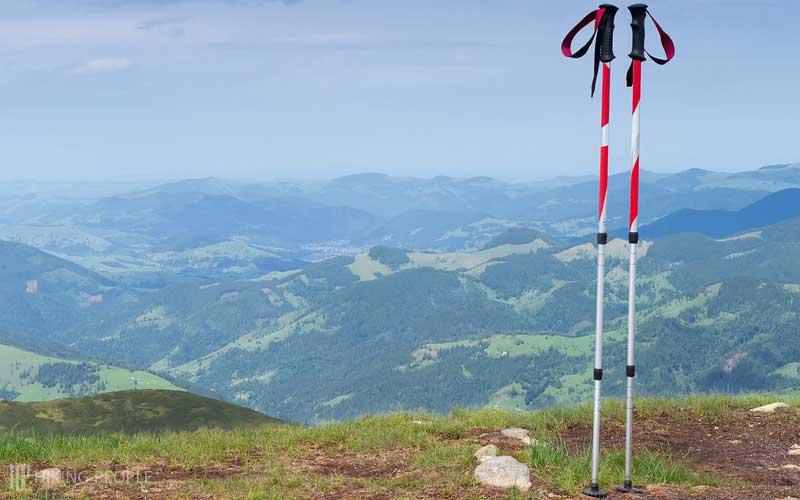 Weight of the Trekking Poles