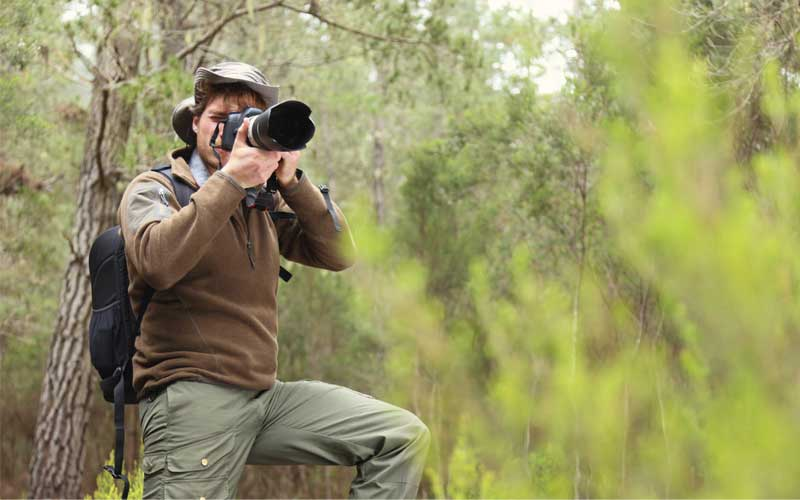 Wildlife photographer taking photo