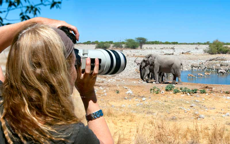 A women is focusing an elephant
